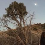 Full Moon in Taurus Horoscopes