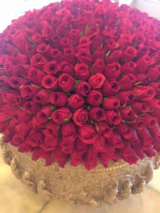 DAY 20 ROSES